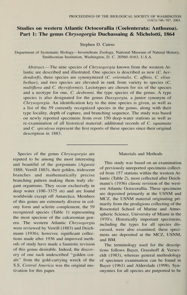 Studies on western Atlantic Octocorallia (Coelenterata: Anthozoa). Part 1: The genus <i>Chrysogorgia</i> Duchassaing & Michelotti, 1864